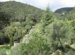 unique property on a vast plot mountains